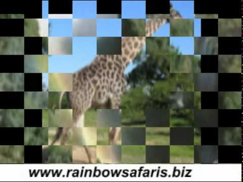 Affordable Chief Mukuni Village Cultural Tour Zambia by Rainbow Safaris Ltd
