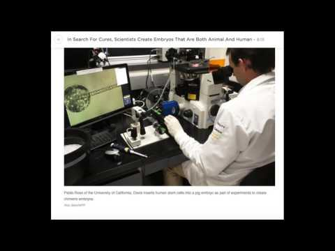 Synthetic Human Genome The Cloning Agenda EXPOSED!!!
