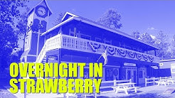 Trip to Strawberry-Pine, AZ | Strawberry Inn and Tonto Natural Bridge