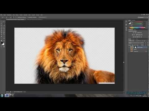 Photoshop Tutorial - Haare Freistellen