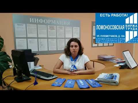 Горячие вакансии Ломоносовской биржи труда!