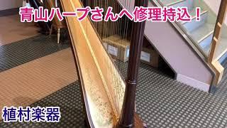 青山ハープさんへ修理持込!【管楽器専門店 植村楽器】
