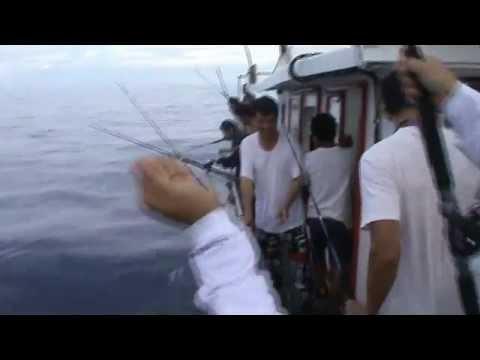 Fymac Fishing: 06/05/2012 Steven Tan