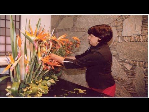 Clique e veja os vídeos da área Curso Profissionalizante CPT Florista