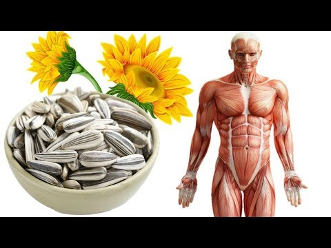9 Surprising Reasons You Should Snack On Sunflower Seeds