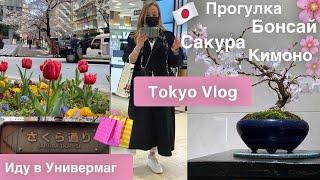 Tokyo 🇯🇵прогулка по улице  сакуры🌸 Бонсай 🌳Кимоно 👘Зонтики 🌂Универмаг в Токио