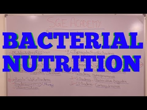Bacterial Nutrition | Mode Of Nutrition In Bacteria