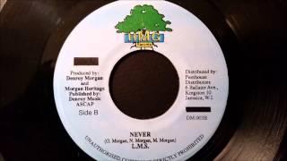 "LMS - Never - HMG 7"" (Liberation Riddim)"