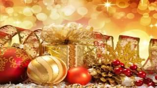 Dâng Chúa Hài Đồng   Nhạc Thánh Ca   Nhạc Noel