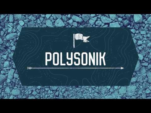 CERN Beamline 2017 - Polysonik, The Shri Ram School Moulsari