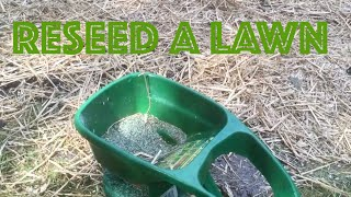 How To Repair Lawn Grass ★★★ How to reseed a Lawn