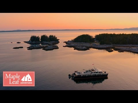 a-journey-through-the-wild-isles-of-british-columbia's-west-coast