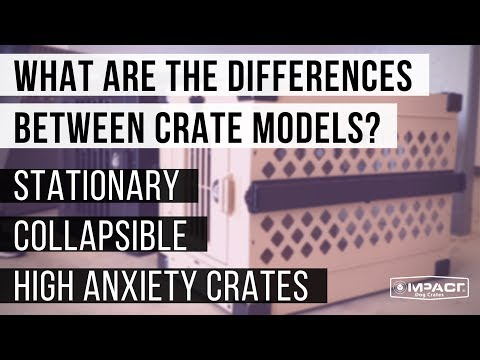 What Are The Differences Between Impact Dog Crate Models?