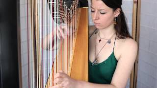 Koji Kondo - Fairy Fountain (from The Legend of Zelda series) - Amy Turk, Harp