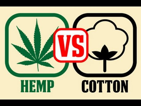 Cotton  Vs. Hemp (2007)