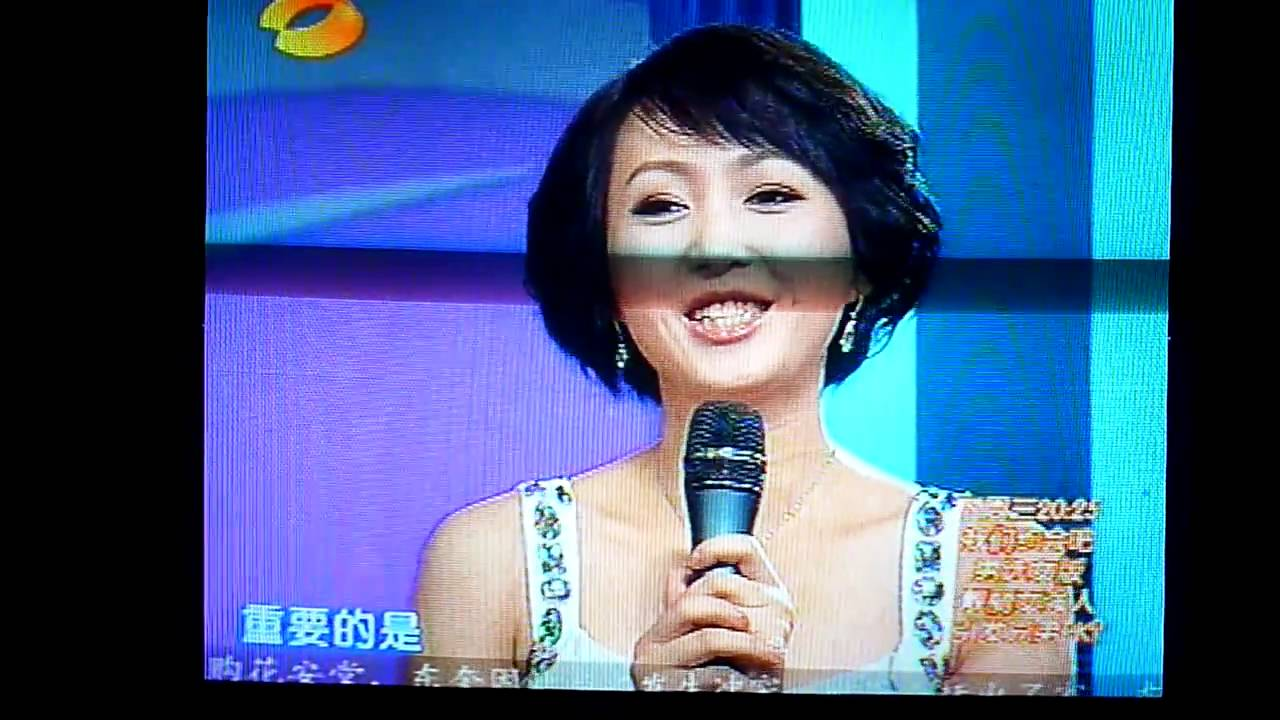 1 vs. (Chinese game show)