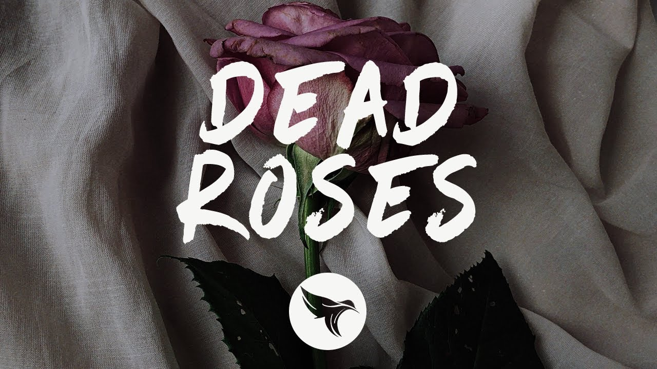 Ollie - Dead Roses (Lyrics)