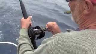 Tuna Fishing Fort Bragg Aug. 2013