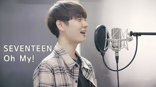 Gambar cover SEVENTEEN(세븐틴) - 어쩌나 (Oh My!) Cover by Dragon Stone