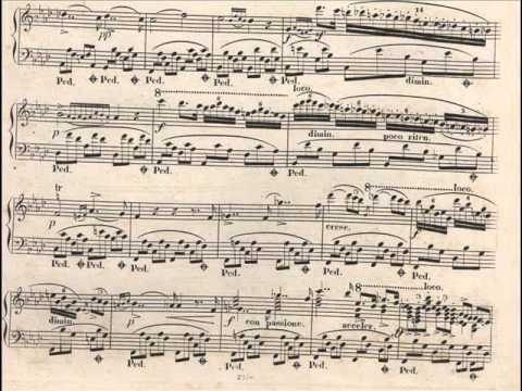 Ignacy Feliks Dobrzyński  - Two Nocturnes Op. 24