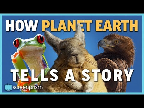 How Planet Earth Tells a Story, Part 1