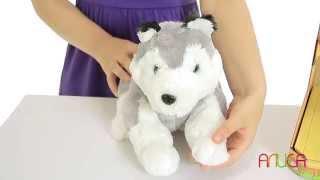 Ласковый щенок - порода Хаски