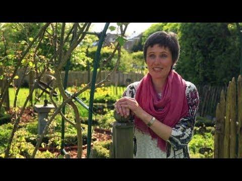 Die andere Eifel - Frühling in der belgischen Eifel | Fahr mal hin | SWR Fernsehen