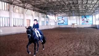Конный спорт. Выездка. Чемпионат Кыргызстана 2017