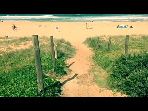 Watch This Before Going To Garie Beach At Royal National Park Sydney