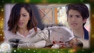 La rosa de Guadalupe: Karina, acusada de matar a Rodrigo Cardenas   El misterioso Señor Cardenas