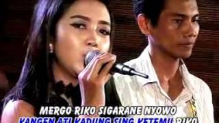 Cindy Asmara Hang Ngundang Roso