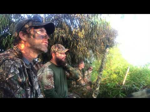Jase Robertson's Update on Teal Season