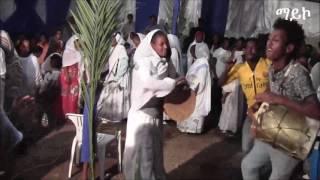 Eritrean Music-