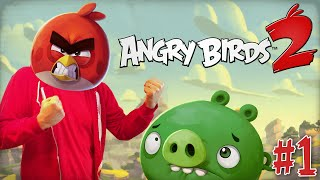 "ANGRY BIRDS 2 Gameplay Part 1 - ""Feathery Hills Levels 1-10!!!"" iOS Android 1080p HD walkthrough"