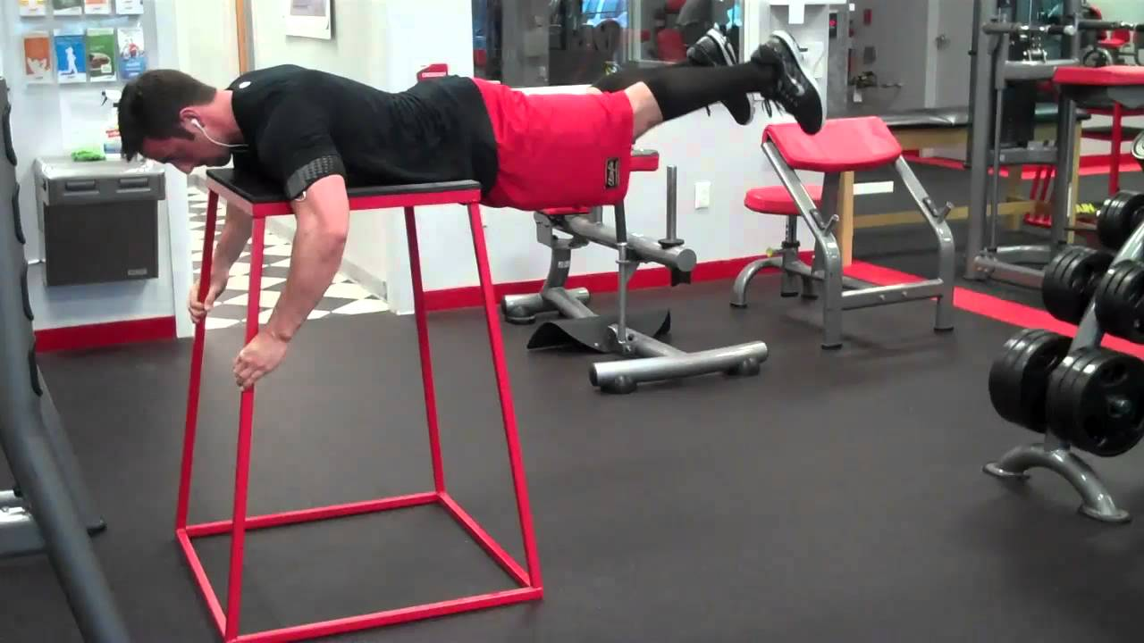 Reverse Hyperextension Youtube