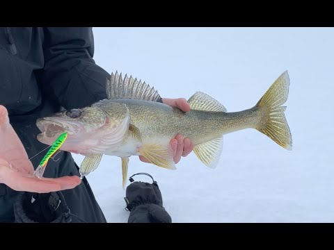 Chasing Mille Lacs Lake Walleyes - Ice Fishing