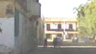 Vidéo 00038// Quartier de la gare- BISKRA//ALGERIE