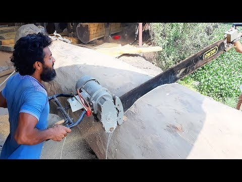 Extreme Heavy Biggest Wood Cutting By Chainsaw Machines - Woodworking in Asia