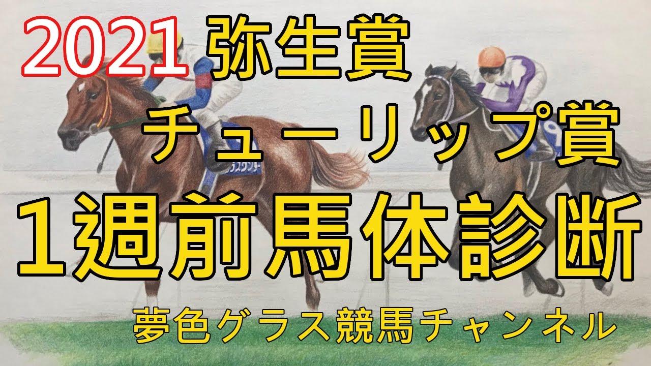 【馬体診断】2021弥生賞ディープインパクト記念&チューリップ賞!シュネルマイスターの好走条件?