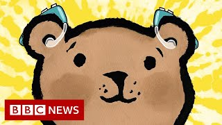 Deaf poet and illustrator go back to school with picture book  - BBC News