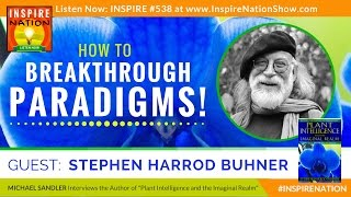 🌟STEPHEN HARROD BUHNER: How to Shift Your Consciousness & Breakthrough Paradigms! | Imaginal Realm