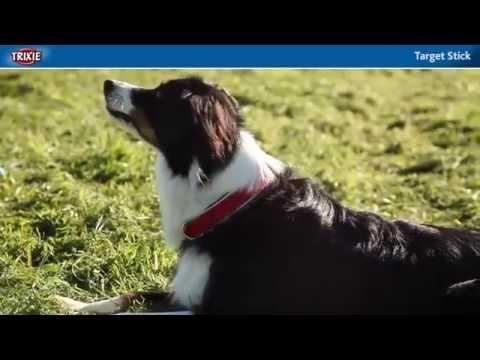TRIXIE: Dog Activity Target Stick