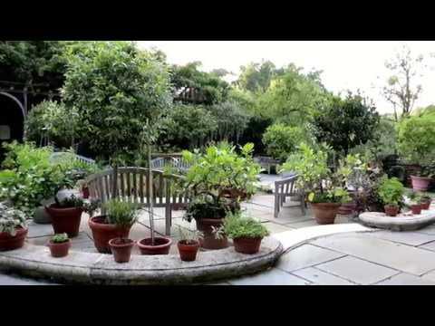 Dumbarton Oaks Gardens: Arbor Terrace - YouTube