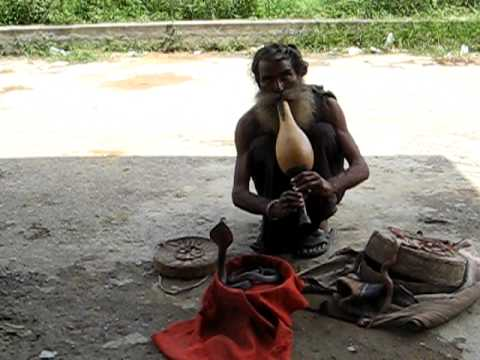 Snake Charmer of India Part 1