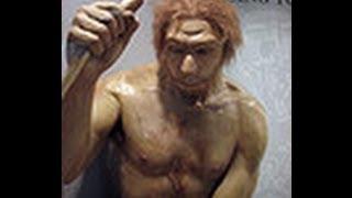 Gambar cover Primitive man