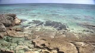 うちなータイムでリラックス、BEGINと過ごす沖縄オーシャンウィークエンド! ~癒しの「音来奏(ニライカナイ)」