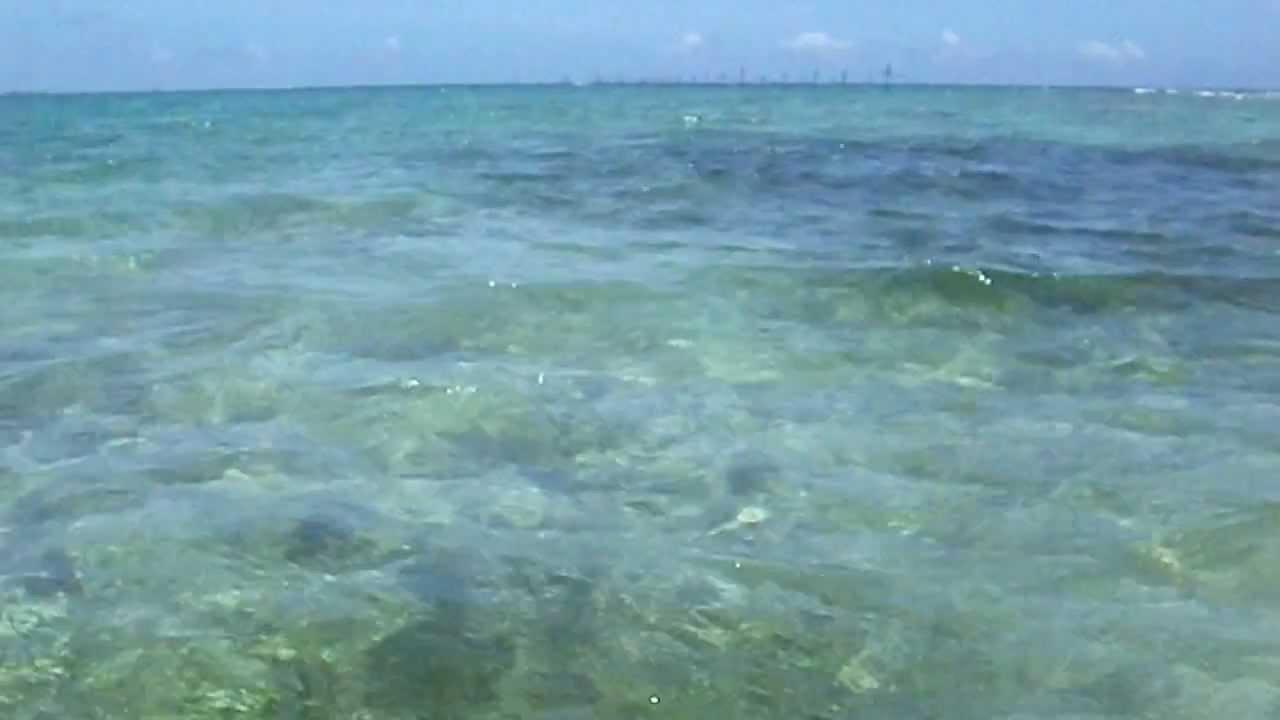 沖縄立ち込みルアー釣り - YouTube