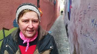 Kristina Creosteanu - curatare si intretinere strada Sforii