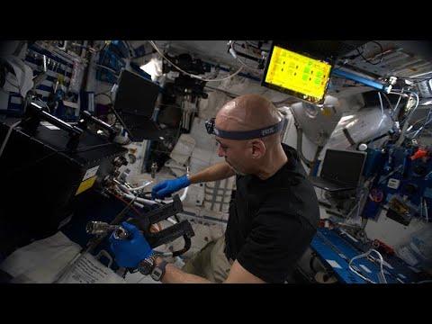 تطبيق ذكي للحمية الغذائية وعلاقة الجاذبية بالوقت في -سلسلة الفضاء-…  - نشر قبل 8 ساعة