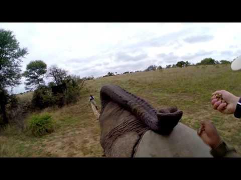 Road trip in Zimbabwe